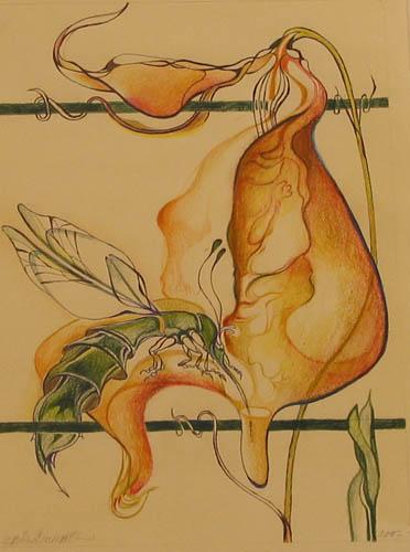 Snoepneus (voorstudie voor glas in lood)