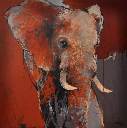 Addo olifant nr 2