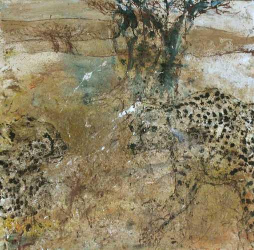 Serengeti Cheetaah