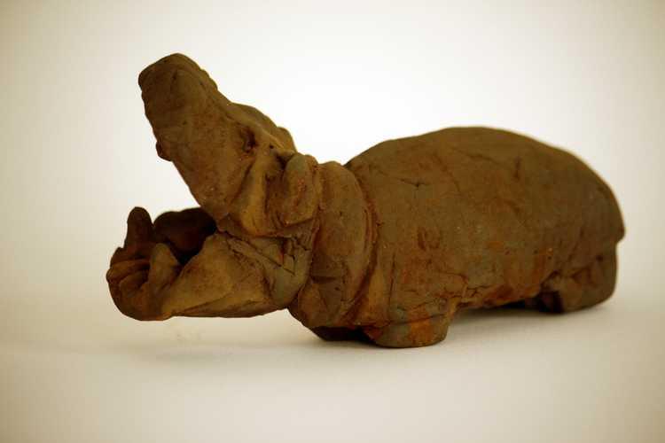 Hippo, 1-4