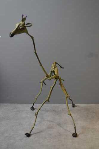 Giraf, 6/8